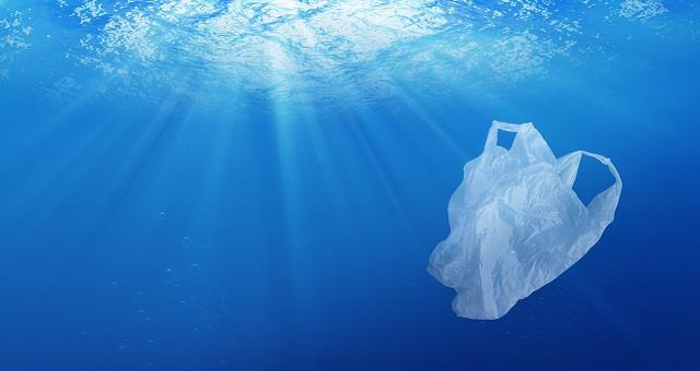 This summer stay with us.<br> Together we will clean the sea.